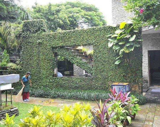 Mum's Garden Resort: お部屋までの道