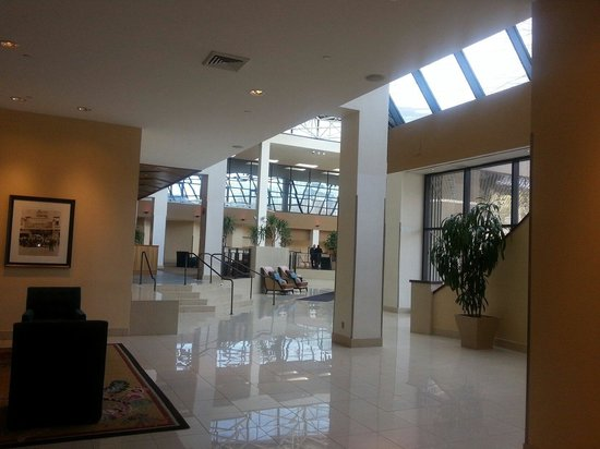 Hilton Stamford Hotel & Executive Meeting Center : Side pick of the lobby