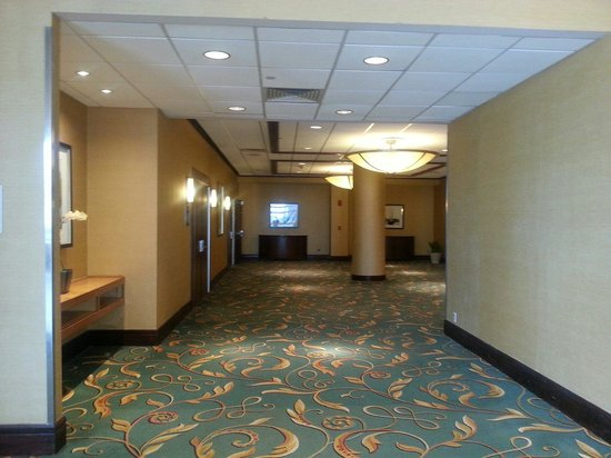 Hilton Stamford Hotel & Executive Meeting Center : One of the corridors on the second floor. Leads to four large meeting rooms at the end.