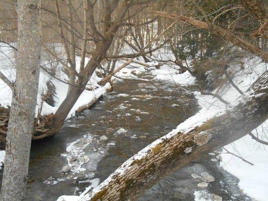 1896 House - Brookside & Pondside Motels: stream bridge passes over:)