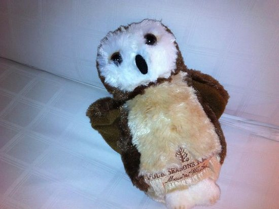 Four Seasons Resort Maui at Wailea : They lavished the kids with gifts and treats upon arrival. Including an plush owl for each one.