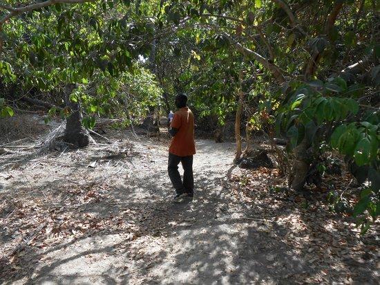 Mandina River Lodge: Amadu - our wonderful guide