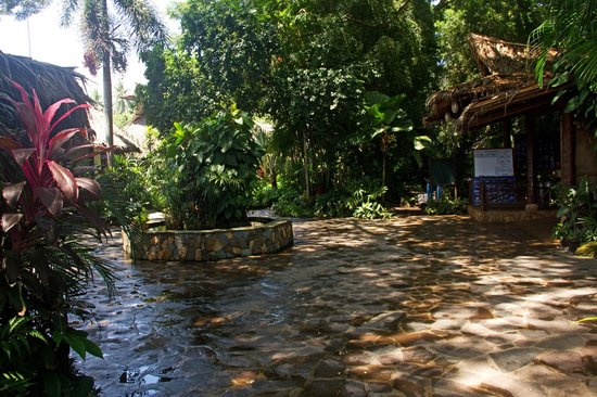 Atlantis Dive Resorts Dumaguete: the path to the beach