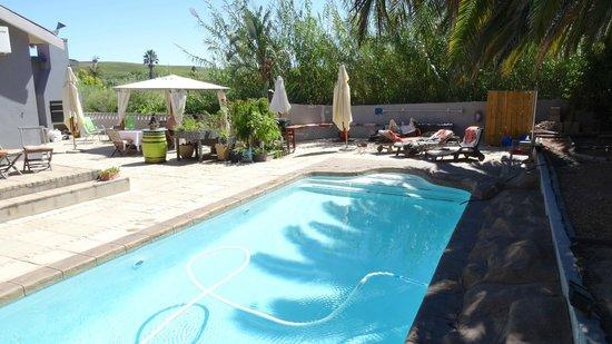 B&B Ons Stee: Pool- und Terrassenbereich