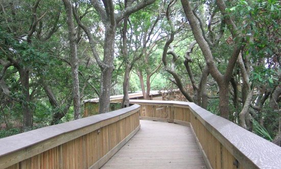 Hampton Inn & Suites Jekyll Island: Beautiful wooden walkway to the beach