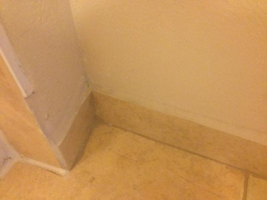 Microtel Inn & Suites by Wyndham BWI Airport Baltimore : Bathroom wall with so much dirt