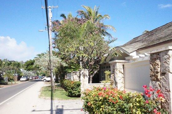 Lanikai Beach: 道路の両脇は別荘です。