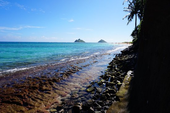 Lanikai Beach: 小道を抜けた所でワンショット��