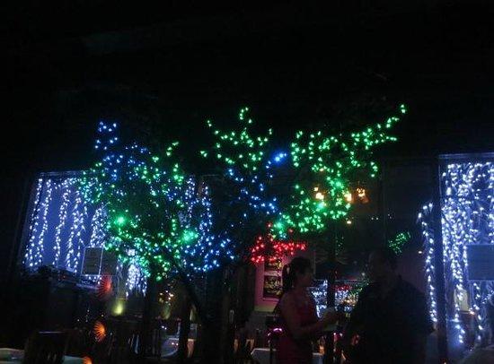 Nirvana Restaurant: Cool tree