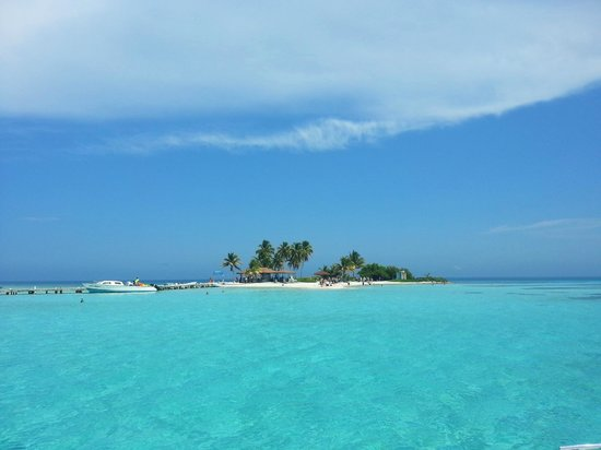 Goff S Caye Full View Picture Of Goff S Caye Belize Cayes Tripadvisor