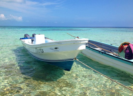Crystal Clear Picture Of Goff S Caye Belize Cayes Tripadvisor