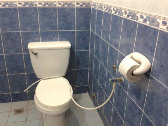 Arwana Perhentian Eco Resort & Beach Chalet : The broken toilet hand push