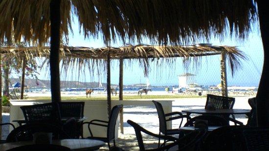 SUNSOL Punta Blanca: vista de la playa desde el comedor