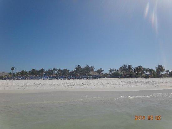 SUNSOL Punta Blanca: vista del hotel desde la playa