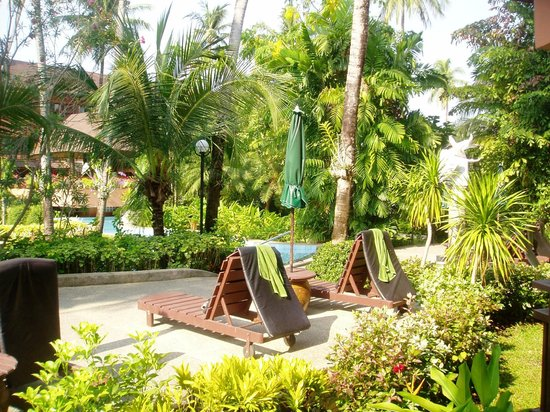 Patong Merlin Hotel : Well maintained gardens.