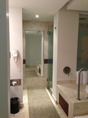 Azul Ixtapa Grand Spa & Convention Center: washroom