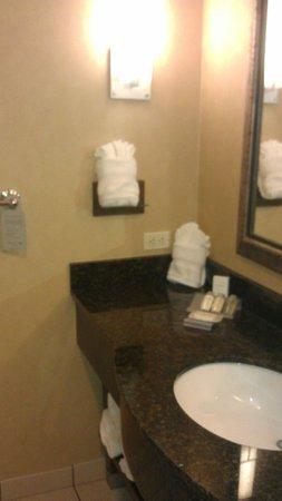 Hilton Garden Inn Monterey: Bathroom