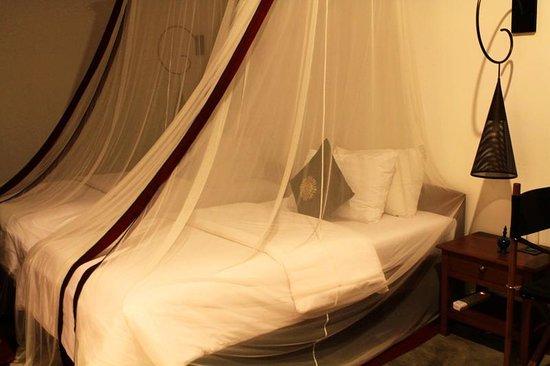 Blue Bird Hotel: Room