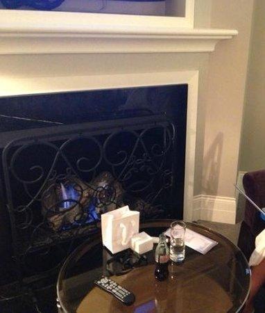 Waldorf Astoria Chicago: Gold Coast Fireplace