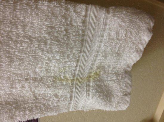 Knights Inn Sarasota: strange color on towel