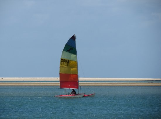Noosa Watersports: sailing noosa river