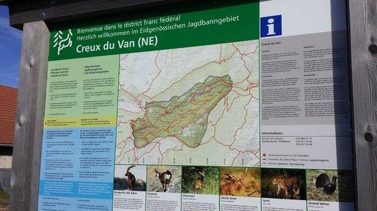 Creux du Van: Finally reached Creux-du-van