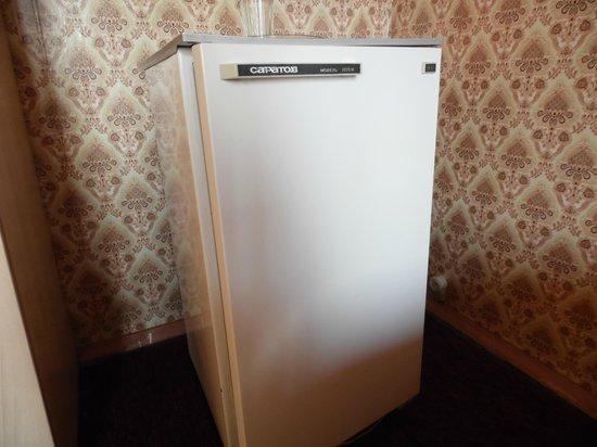 Sayany Hotel: Холодильник