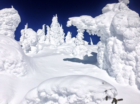 "Whitefish Mountain Resort: The ""snow ghosts"" that Whitefish is famous for."