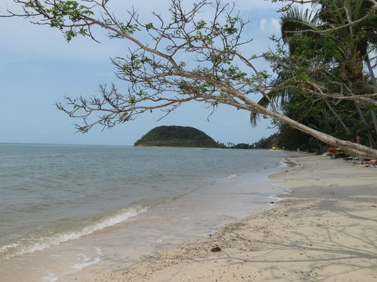 Mövenpick Resort Laem Yai Beach Samui: The Beach and the sea