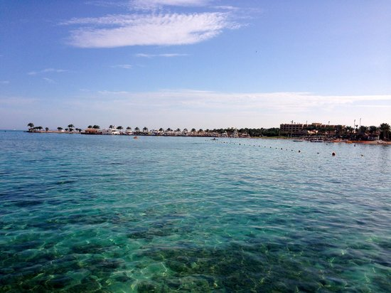 Steigenberger Al Dau Beach Hotel: Vista del mar magnífica