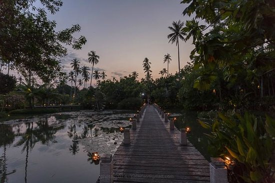 Anantara Mai Khao Phuket Villas : lagoon path