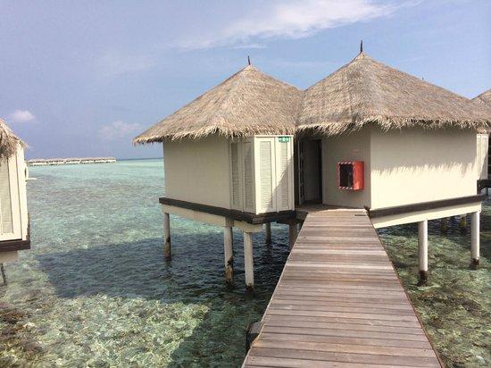 Cinnamon Dhonveli Maldives: Water Bungalow