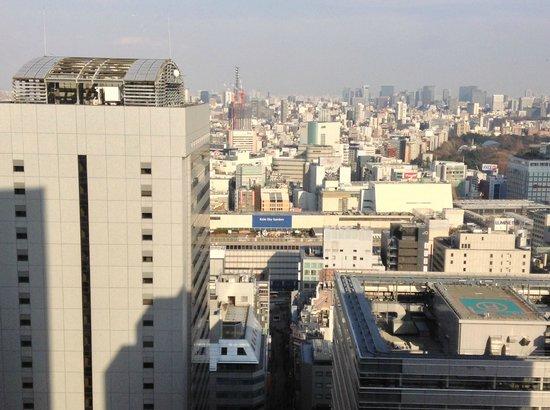 Keio Plaza Hotel Tokyo: 景色は良くなかった・・・