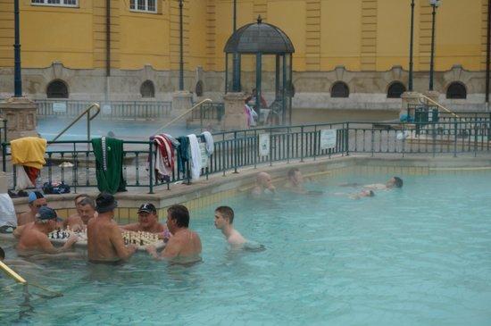 Széchenyi Baths and Pool : Сеченские купальни