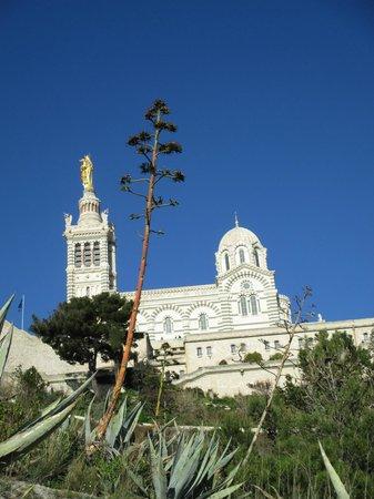 Basilique Notre-Dame de la Garde : Depuis le jardin du bois sacré