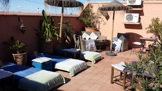 Riad Les Lauriers Blancs: roof terrace