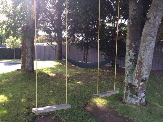 Beechtree Motel : Swings and hammock