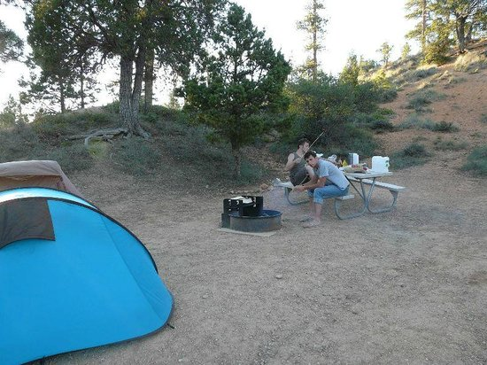 North Campground: Notre emplacement avec le barbecue ;-)