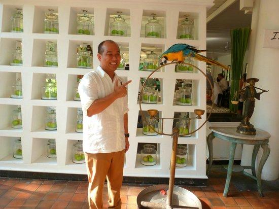 "Anantara Hua Hin Resort: The two Alex's (Parrot and ""Chief Guru !"")"