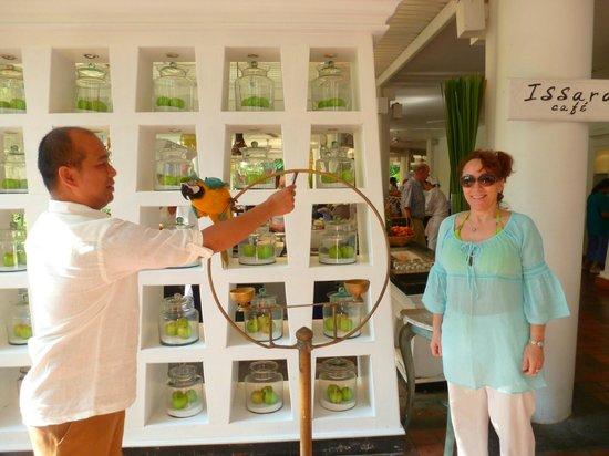 Anantara Hua Hin Resort: Alex the resort's own parrot !