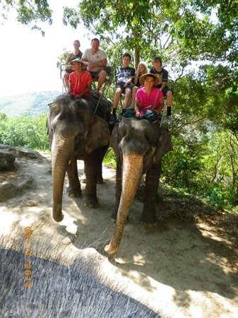 Siam Safari : elephants with a view