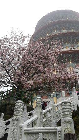 Tian Yuen Temple
