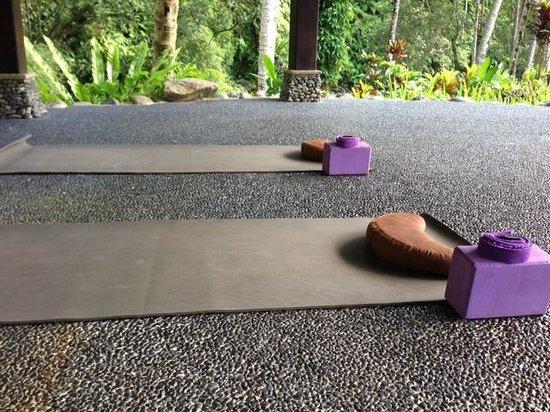 The Royal Pita Maha: Yoga by ayung river