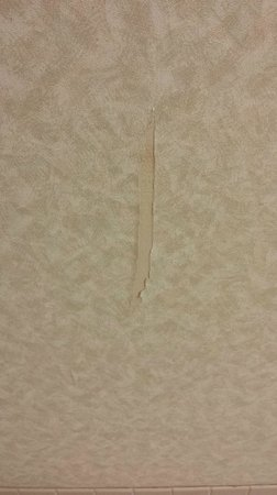 DoubleTree by Hilton San Jose : Gouge in wall.