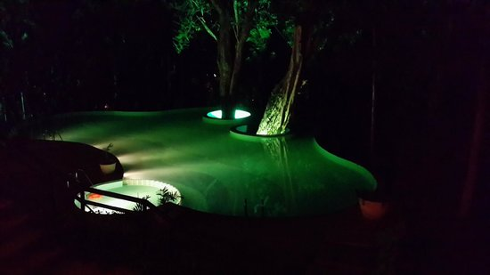 The Windflower Resort and Spa, Coorg: Pool by night