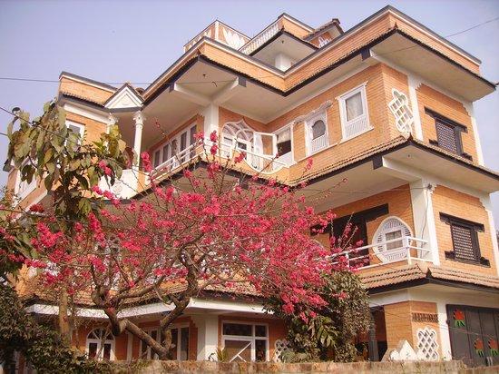 Panday's Paradise : getlstd_property_photo
