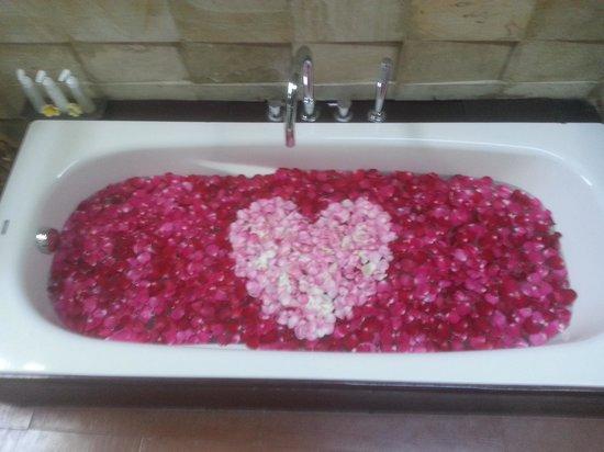 Bali Dream Suite Villa: bath tub