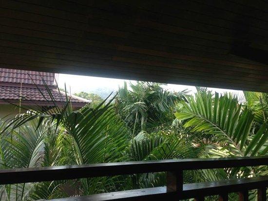 Best Western Premier Bangtao Beach Resort & Spa : Blick vom Balkon in Palmen und die Berge