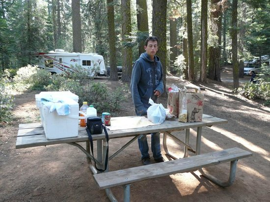 Crane Flat Campground : Notre emplacement