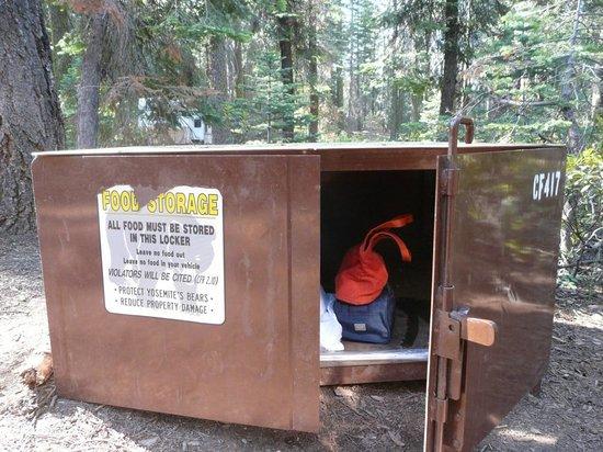 Crane Flat Campground : La boite à ours !